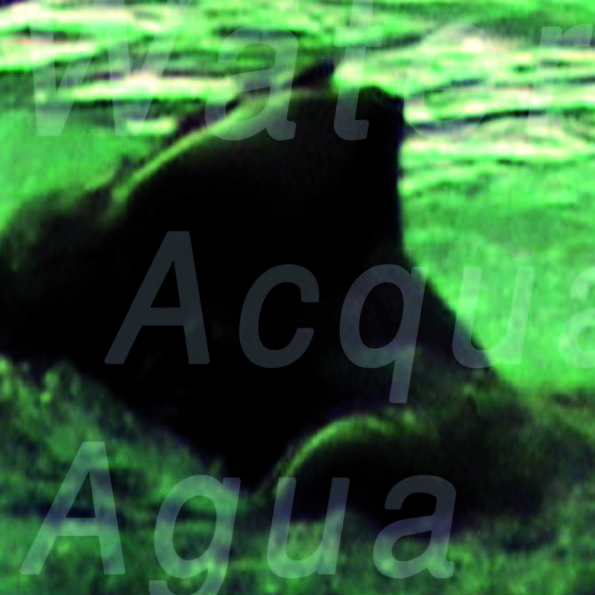 Contemporary Ecologies_10_Leggero_04_Page_19